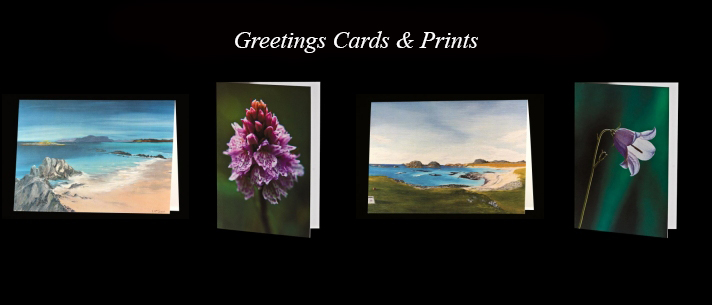 Greetings cards & prints promo